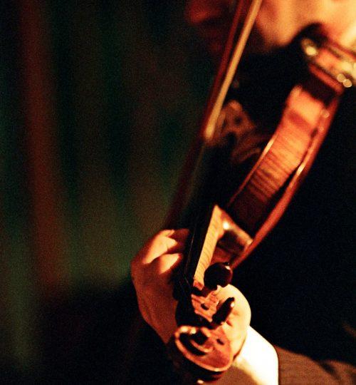 Violino 16