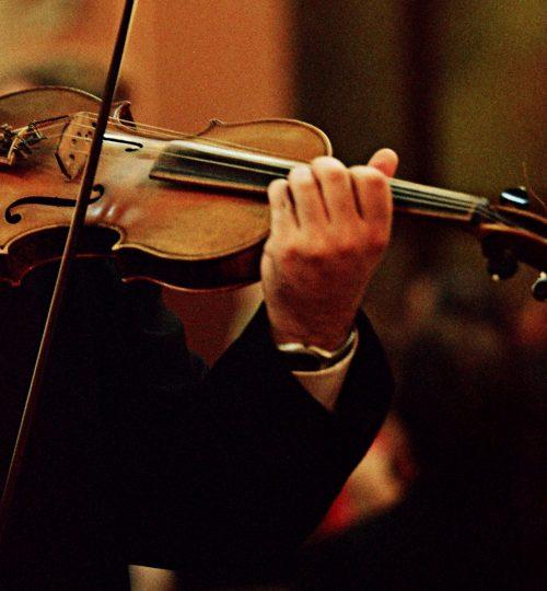 Violino 18