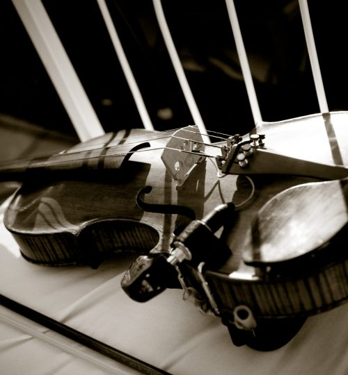 Violino 26