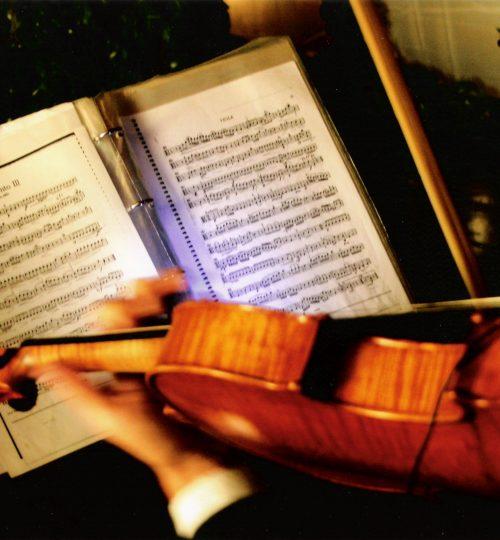 Violino36.jpg