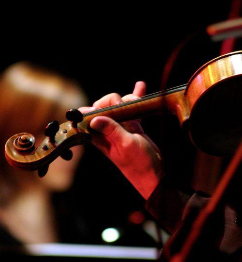 violino-show-2-scaled.jpg